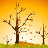 jesień sezon Zdjęcia Royalty Free
