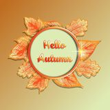 Jesień sezonu sztandar Kartka z pozdrowieniami z inskrypcją Cześć Zdjęcia Stock