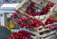 Jesień skład z czerwonymi jagodami, pieprzami i słonecznikiem, fotografia royalty free