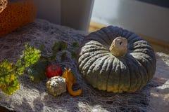 Jesień skład z dużymi i małymi pomarańczowymi baniami, Zdjęcia Royalty Free