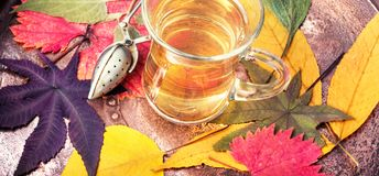 Jesień skład z jesienną herbatą zdjęcie stock