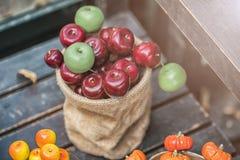 Jesień skład z różnymi baniami, jesień liście, kasztany, rowan jagody, jesieni żniwa pojęcie Obrazy Stock