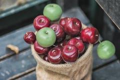 Jesień skład z różnymi baniami, jesień liście, kasztany, rowan jagody, jesieni żniwa pojęcie Zdjęcie Stock