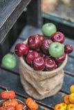 Jesień skład z różnymi baniami, jesień liście, kasztany, rowan jagody, jesieni żniwa pojęcie Zdjęcia Royalty Free