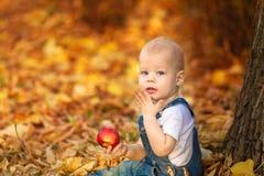 Jesień, spadek, dziewczyna, dziecko szczęśliwy, mały, dzieciak, natura, park, liście, sezon, portret, kolor żółty, ulistnienie, d Fotografia Stock
