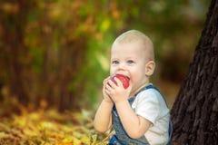 Jesień, spadek, dziewczyna, dziecko szczęśliwy, mały, dzieciak, natura, park, liście, sezon, portret, kolor żółty, ulistnienie, d Zdjęcie Royalty Free