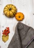 Jesień, spadek naturalny, nieociosany tło obrazy royalty free