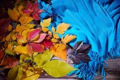 Jesień spadek opuszcza i ciepły błękitny szalik Odgórny widok fotografia royalty free