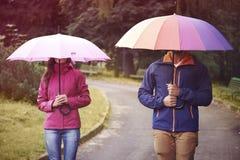 jesień spadek przyjaciele leaf pod spaceru pogody drewnem Zdjęcie Stock