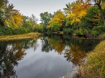 Jesień spadku koloru bagna Bonnechere prowincjonału park Zdjęcie Royalty Free