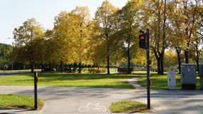Jesień, spadku krajobraz drzewni kolorowi liść Obraz Stock