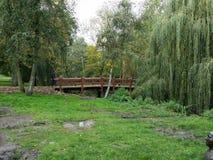 Jesień spadku landscap fotografia stock