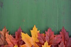 Jesień spadku Nieociosany Drewniany tło Zdjęcia Royalty Free
