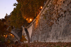 Jesień spadku Rzym drzewa liść Obrazy Stock