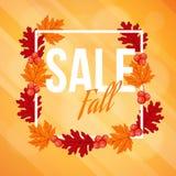 Jesień spadku sprzedaży tło z klonem, dąb jagody i liście i, Obrazy Stock