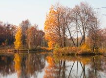 jesień staw Obraz Royalty Free