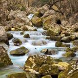 jesień strumień Obraz Royalty Free