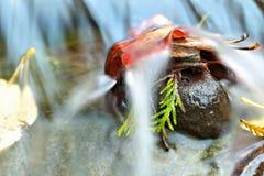 Jesień strumień Zdjęcia Stock
