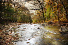 Jesień Strumień wykładał z drzewami zdjęcie royalty free