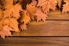 Jesień susi liście z drewnianą powierzchnią obrazy royalty free