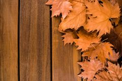 Jesień susi liście z drewnianą powierzchnią zdjęcia stock