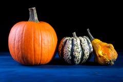 Jesień symbole fotografia stock