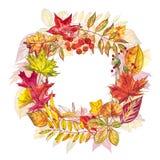 Jesień szablonu tło Sezonowe ilustracje Sieć sztandaru szablon beak dekoracyjnego latającego ilustracyjnego wizerunek swój papier Obrazy Stock