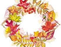 Jesień szablonu tło Sezonowe ilustracje Sieć sztandaru szablon beak dekoracyjnego latającego ilustracyjnego wizerunek swój papier Obrazy Royalty Free