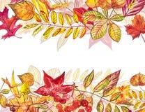 Jesień szablonu tło Sezonowe ilustracje Sieć sztandaru szablon beak dekoracyjnego latającego ilustracyjnego wizerunek swój papier Zdjęcia Royalty Free