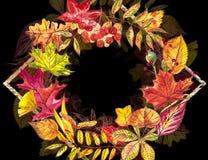 Jesień szablonu tło Sezonowe ilustracje Sieć sztandaru szablon beak dekoracyjnego latającego ilustracyjnego wizerunek swój papier Zdjęcie Royalty Free