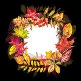 Jesień szablonu tło Sezonowe ilustracje Sieć sztandaru szablon beak dekoracyjnego latającego ilustracyjnego wizerunek swój papier Zdjęcie Stock