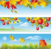 jesień sztandary trzy Obrazy Royalty Free