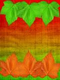 jesień tła kolorowy żywy Obrazy Royalty Free