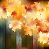 jesień tła kopii liść nad astronautyczny drewnianym EPS10 Zdjęcie Royalty Free
