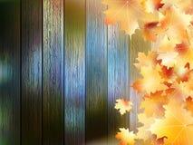 jesień tła kopii liść nad astronautyczny drewnianym EPS10 Zdjęcia Stock