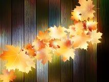 jesień tła kopii liść nad astronautyczny drewnianym EPS10 Obraz Royalty Free