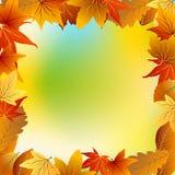 jesień tła ramy liść biel Fotografia Stock