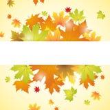 Jesień tło Obraz Stock