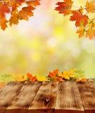 Jesień tło obrazy stock
