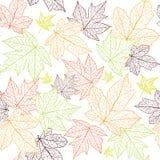 jesień tło opuszczać bezszwowy Zdjęcie Royalty Free