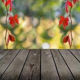 Jesień temat i pusty drewniany pokładu stół. Zdjęcia Stock
