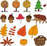 Jesień ustawiająca z pieczarkami, owoc, jeżem, liśćmi, banią i acorn, Zdjęcia Stock