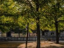 Jesień w środkowym Berlin obrazy stock