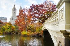 Jesień w central park w mieście Nowy Jork, usa fotografia royalty free