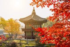 Jesień w Gyeongbokgung pałac, Seul w Południowym Korea Zdjęcie Stock