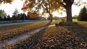 Jesień w Indiana obrazy royalty free