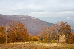 Jesień w Karpackich górach zdjęcia royalty free