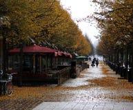 Jesień w Kungstradgarden parku stockholm Szwecja obrazy royalty free