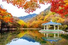 Jesień w Naejangsan parku narodowym, Południowy Korea Fotografia Royalty Free