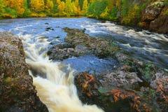 Jesień w Oulanka jarze. obrazy royalty free